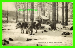 VERMONT - GATHERING SAP IN VERMONT MAPLE ORCHARD - ANIMATED - AMERICAN ART POST CARD CO - - Etats-Unis