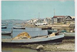 L Etang De L Ayrolle Pres De Gruissan Cabanes Barques De Pecheurs 4l Fourgonnette Ami 6 - France