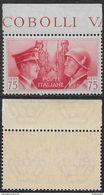 Italia Italy 1941 Regno Fratellanza D'armi Italo-tedesca C75 Bordo Sa N.456 Nuovo Integro MNH ** - Nuovi
