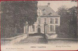 Mortsel Vieux Dieu Oude God Kasteel Chateau Cappenberg - Mortsel