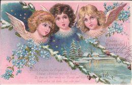 Fröhliche Weihnachten, Anges Et Myosotis, Litho (954) - Anges