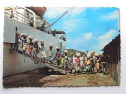 CPM Ile De La Martinique - Chargement Des Bananes - Unclassified