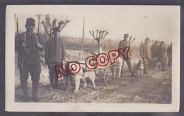 Italie Italia Guerre 1914-1918 ? Attelage De Chiens Chien Militaire Militaria Beau Format - Guerre, Militaire