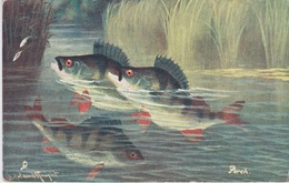 British Fish  Série II - Fish & Shellfish