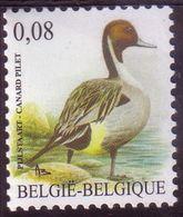 BE 2011  - BUZIN N° 4091 XX - Canard Pilet - 1985-.. Pájaros (Buzin)