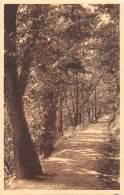 SPA - Promenade D'Annette Et Lubin - Spa