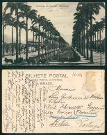 BRASIL  [OF # 16004] - BRAZIL PALMEIRAS DO MANGUE RIO - Brasilien