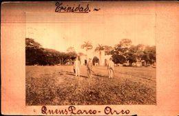 87167) Cartolina Fotografica -trinidad-anens Parco-arco-nuova - Cartoline
