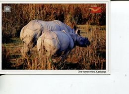 (102) India - UNESCO Pne Horned Rhino - Kaziranga - Rhinoceros