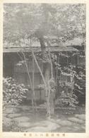 Japon - Lieu à Identifier - Tokyo? Jardin Impérial? - Juin 1921 - Te Identificeren