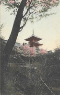Japon - Lieu à Identifier - Tokyo? Pagode? - Carte Non Circulée - Te Identificeren