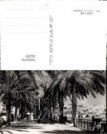 562397,Africa Maroc Tanger Avenue D`Espange - Marokko