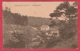 Cerfontaine - Promenades ( Voir Verso ) - Cerfontaine