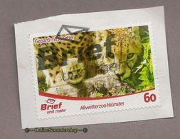 (L13) Privatpost  - Brief Und Mehr - Gepard (Acinonyx Jubatus) - Raubkatzen