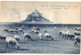 ***  50  ***  Mont Saint Michel Les Prés Salés TTB écrite - Le Mont Saint Michel