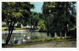 MOUSCRON - Parc - Edit. Rousselle-Castel - Mouscron - Moeskroen