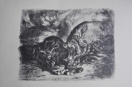 GRAVURE 1165 / CHEVAL SAUVAGE TERRASSE PAR UN TIGRE Par EUGENE DELACROIX Né à CHARENTON ST MAURICE En 1798 - Estampes & Gravures