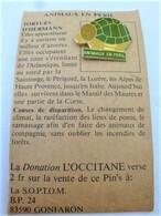 PINS ANIMAUX EN PERIL LES TORTUES D'HERMANN / 33NAT - Animals