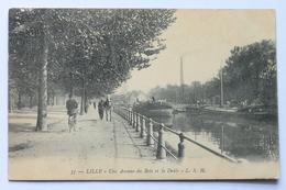 Une Avenue Du Bois Et La Deule, Lille, France - Lille