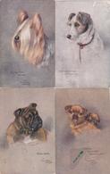 3 Cartes Postales Anciennes De L'illustrateur Raphael Tuck , + Une  Pas TUCK  Chiens - Tuck, Raphael