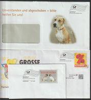 T 136) Hunde Auf Infopost Frankierwelle - Cani