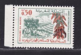 MAROC N°  611 ** MNH Neuf Sans Charnière, TB (D6163) Année Internationale Oléicole - Morocco (1956-...)