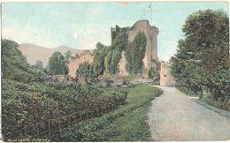 Postcard Ireland Ross Castle Killarney Co. Kerry Ruin Posted Early 20th Century - Kerry