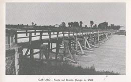 Carturo (Piazzola Sul Brenta) Ponte Sul Brenta, Non Viaggiata, Formato Piccolo - Padova