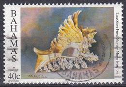 Bahamas 1996 Tiere Fauna Animals Weichtiere Molluscs Schnecken Snails Stachelschnecke, Mi. 895 Gest. - Bahamas (1973-...)