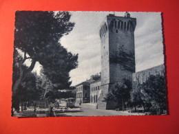 CARTOLINA   PORTO RECANATI CORSO G MATTEOTTI  ANIMATA   D - 2925 - Macerata