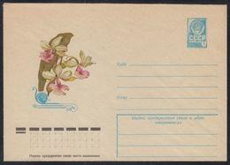 12509 RUSSIA 1977 ENTIER COVER Mint FLORA Calanthe ORCHID ORCHIDS ORCHIDEE FLOWER FLEUR FLEURS BLUMEN BLUME PLANT 730 - Orchideen