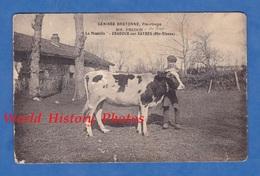 """CPA - ORADOUR Sur VAYRES - Ferme """" La Maurelle """" , MM. Fredon - Vache Génisse Bretonne - Agriculture Enfant - Oradour Sur Vayres"""