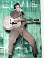 Elvis PRESLEY, Guitare - Artisti