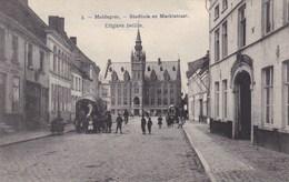 Maldeghem, Maldegem, Stadhuis En Marktstraat, Met Koets (pk45132) - Maldegem