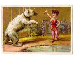 Chromo Ours Blanc, Zoo, Cirque - Sonstige