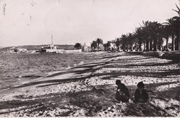 97 BIZERTE                           La Plage - Tunisie