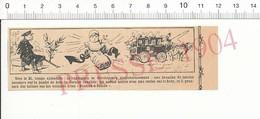 Humour 1904 Branche Laurier Arbre Jambe De Bois Cerises Fruit Naissance Bébé Laitues Panier à Salade Voiure 216PF10XH - Vieux Papiers