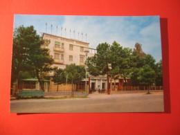 CARTOLINA    MARINA DI RAVENNA  HOTEL MAREPINETA ANIMATA     D -  2256 - Ravenna