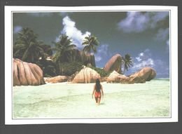 Seychelles - The Royal Cove - The Breakwater - Seychelles