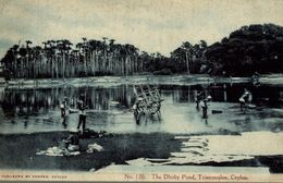 SEE STAMP!! PERFORATED     1904    THE DHOBY POND TRINCOMALEE   SRI LANKA . CEYLON CEYLAN - Sri Lanka (Ceilán)