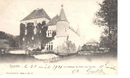Namur - CPA - Yvoir - Spontin - Le Château Du Côté Des Chutes - Yvoir