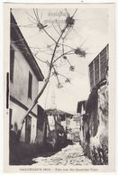 GREECE Thessaloniki Salonica, Street View In Turkish District, 1916 Vintage Postcard - Greece