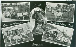 Slagharen 1969; Leve De Vacantie In Het Shetland Pony Park, Vijf-luik - Gelopen. (Eigen Uitgave) - Netherlands