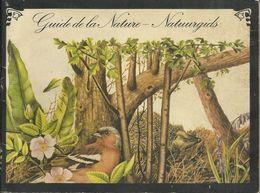 NATUURGIDS GUIDE DE LA NATURE INSECTES PAPILLONS CHAMPIGNONS COQUILLAGES EAU DOUCE GRENOUILLES ETC... DIXAN - Livres, BD, Revues