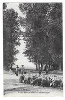SAINT MARTIN LE BEAU (37) Les Paturages Moutons Animations - France