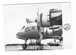 COMPAGNIE DE TRANSPORTS AERIENS INTERNATIONAUX  Voyager Expédiez Par TAI Avion DC6 B - Flugwesen
