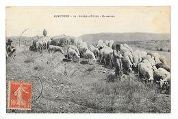 ARDES Sur COUZE  (cpa 63)  Un Berger  -   - L 1 - France