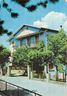 Cartolina Lizzano In Belvedere Val Carlina Hotel Francia 1979 - Bologna