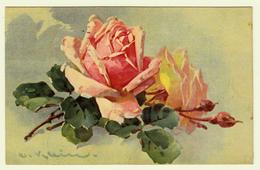 C. Klein  Uvachrom Série 315 No 4864 - Klein, Catharina