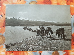 Kyrgyzstan. Tian Shan Mountains. Sarydżaz River  - Old USSR Postcard 1956 - Kyrgyzstan